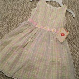 Sweet Heart Rose Girl's Dress